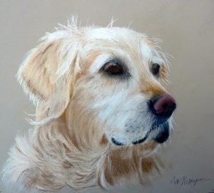 Pat dog 2
